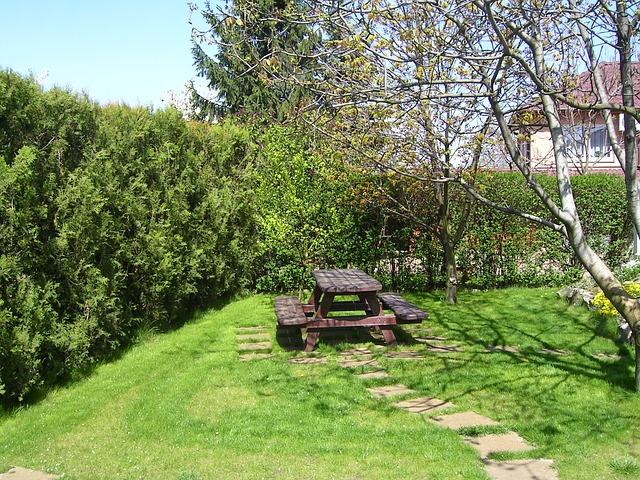 garden-80777_640